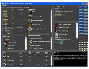 DDO Character planner screenshot